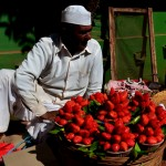 1 the famous m`shwar strawberrys