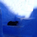 7 everybody who visits chefchaouen HAS to take this picture